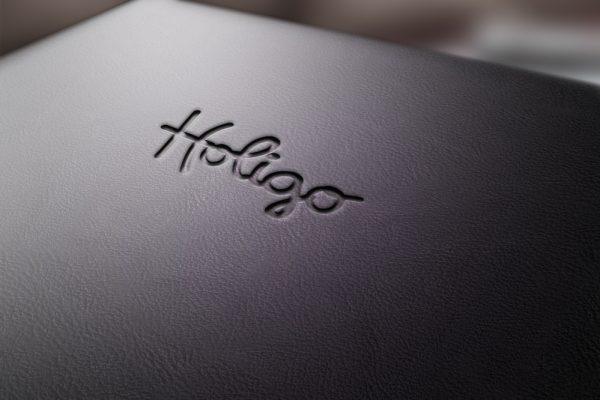 Logo HOLIGO.pl